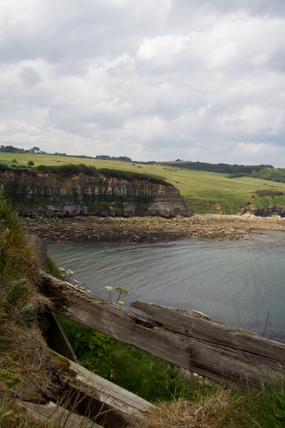Cliffs north of Scarborough, 2011